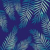 Hojas de palma, modelo tropical, dibujo de lápiz stock de ilustración