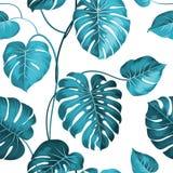 Hojas de palma tópicas stock de ilustración