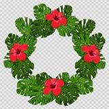Hojas de palma tropicales con las flores para los elementos del diseño fotos de archivo libres de regalías