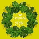 Hojas de palma tropicales para los elementos del diseño imágenes de archivo libres de regalías