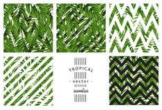 Hojas de palma tropicales Vector inconsútil Fotografía de archivo libre de regalías