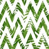 Hojas de palma tropicales Vector inconsútil Imagen de archivo