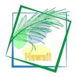 Hojas de palma tropicales y caligrafía Hawaii Lema de la tipograf?a en marco libre illustration