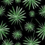 Hojas de palma verdes exhaustas de la mano, pintura tropical de la acuarela - modelo inconsútil en fondo negro imagen de archivo libre de regalías
