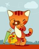 Hojas de ruta (traveler) del gato Imagen de archivo