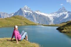 Hojas de ruta (traveler) en el prado alpino fotografía de archivo libre de regalías