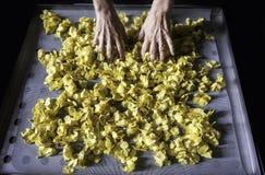 Hojas de sequía de la flor Fotografía de archivo