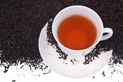 Hojas de té alrededor de la taza de té, Foto de archivo