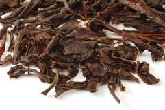 Hojas de té negras Imagenes de archivo