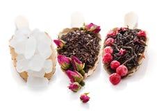Hojas de té negras con los brotes color de rosa y bayas y azúcar aislados Fotos de archivo libres de regalías