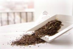 Hojas de té suizas blancas de la trufa Imagen de archivo
