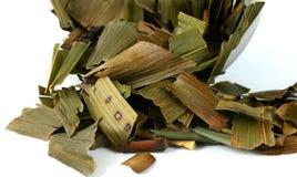 Hojas de té verdes Fotos de archivo