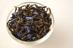 Hojas de té verdes condimentadas con los pétalos azules de la flor Foto de archivo libre de regalías
