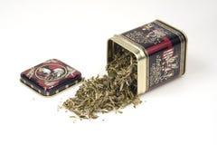Hojas de té verdes de una poder de estaño Imagen de archivo libre de regalías