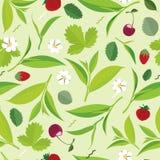 Hojas de té verdes inconsútiles modelo, limón, cereza Imagen de archivo