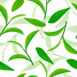 Hojas de té verdes vivo que vuelan, modelo inconsútil del vector ejemplo blanco del fondo 3d stock de ilustración