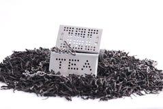 Hojas de té y pequeña casa imagen de archivo libre de regalías
