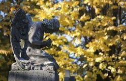 Hojas del ángel y del amarillo Foto de archivo libre de regalías