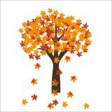 Hojas del árbol de arce del otoño en fondo brillante EPS 10 Fotos de archivo libres de regalías