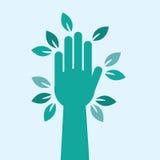 Hojas del árbol de la mano Foto de archivo libre de regalías