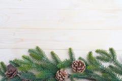 hojas del abeto del fondo de la Navidad Imagen de archivo libre de regalías