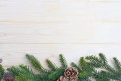 hojas del abeto del fondo de la Navidad Fotos de archivo