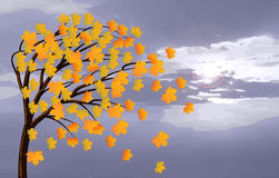 Hojas del amarillo del arce en el viento stock de ilustración
