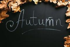 Hojas del amarillo y el otoño de la inscripción en una pizarra Fotografía de archivo libre de regalías