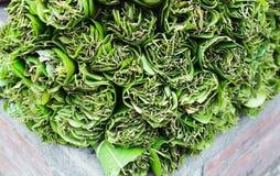 Hojas del betel, betle del gaitero, en la venta para el uso medicinal y como estimulante suave en Katmandu, Nepal imagen de archivo libre de regalías