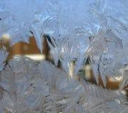 Hojas del hielo Imagen de archivo libre de regalías