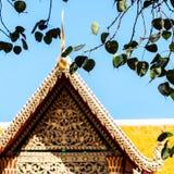 Hojas del higo sagrado con el templo Fotografía de archivo