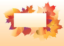 Hojas del otoño Imágenes de archivo libres de regalías