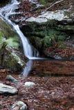 Hojas del otoño en agua Poco río y cascada Foto de archivo libre de regalías