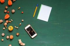 Hojas del otoño y frutas amarillas y rojas en un fondo verde imágenes de archivo libres de regalías