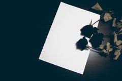 hojas del papel en blanco en la tabla de madera vieja Visión superior Imagen entonada Fotografía de archivo libre de regalías