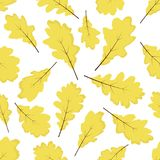 Hojas del roble amarillo Modelo inconsútil del vector del otoño Aislado en el fondo blanco libre illustration