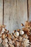 Hojas del roble del otoño en viejo fondo de madera Imagenes de archivo