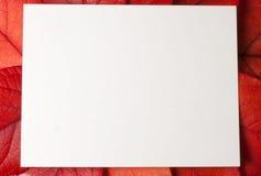 Hojas del rojo con la tarjeta Fotografía de archivo