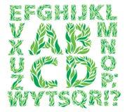 Hojas del verde del alfabeto libre illustration