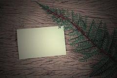 Hojas del verde y tarjeta en blanco Fotografía de archivo