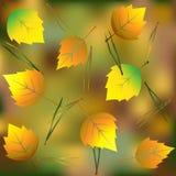 Hojas en bosque del otoño en la tierra stock de ilustración