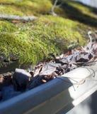 Hojas en canal de la casa con el musgo en el tejado Imagen de archivo libre de regalías