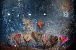 Hojas en forma de corazón Fotos de archivo