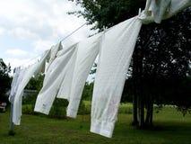 Hojas en la línea de ropa Foto de archivo libre de regalías