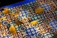 Hojas en los azulejos, Sevilla Imágenes de archivo libres de regalías