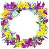 Hojas, flores y mariposa tropicales Fotos de archivo libres de regalías