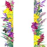 Hojas, flores y mariposa tropicales Foto de archivo