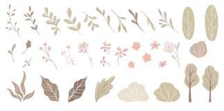 Hojas, flovers, arbustos, árboles Imagen de archivo libre de regalías