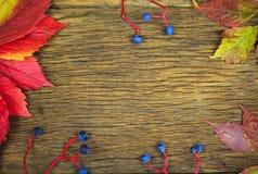 Hojas hermosas en el fondo de madera del vintage, diseño de la frontera tono del color del vintage - concepto de hojas de otoño e Fotos de archivo