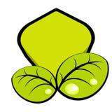 Hojas ilustradas del verde Fotografía de archivo libre de regalías